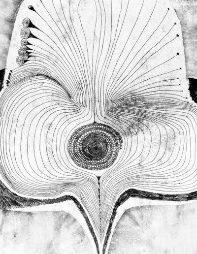 Pawie Oko | nr.kat. 0077